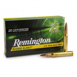 20 CARTOUCHES REMINGTON 30-06 SPRG 180GR CLPSP