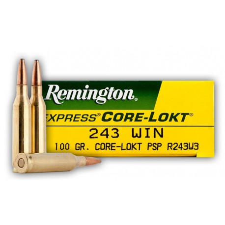 20 CARTOUCHES REMINGTON 243 WIN 100GR CLPSP